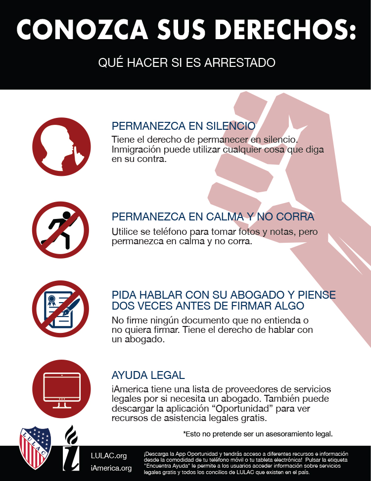know your rights flyers